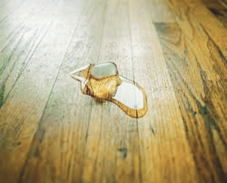 Ice cube melting on a hardwood floor