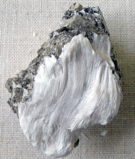 Asbestos (tremolite) silky fibres on muscovite from Bernera, Outer Hebrides. Photograph taken at the Natural History Museum, London.