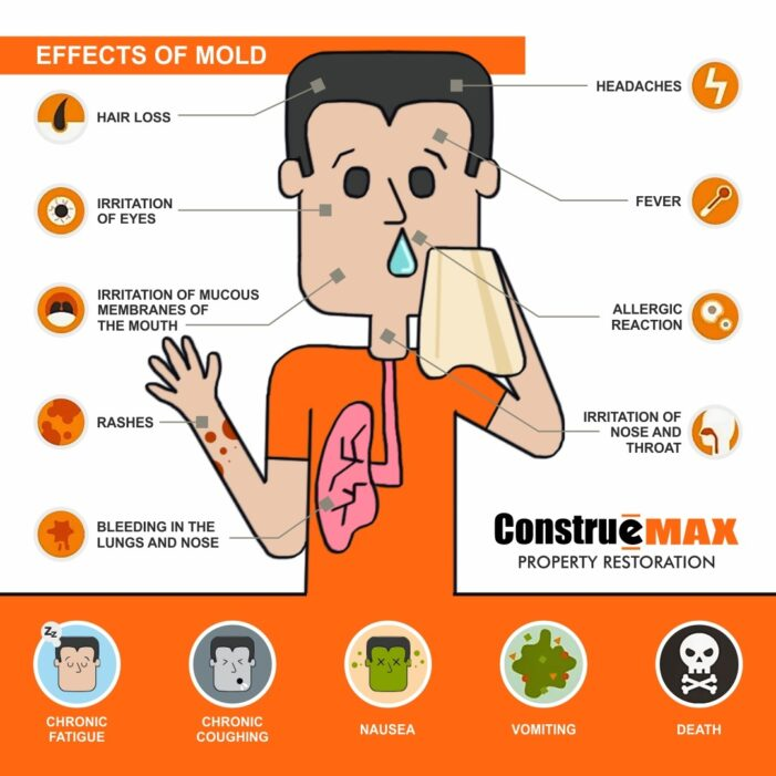 The effects of mold are shown in this image.